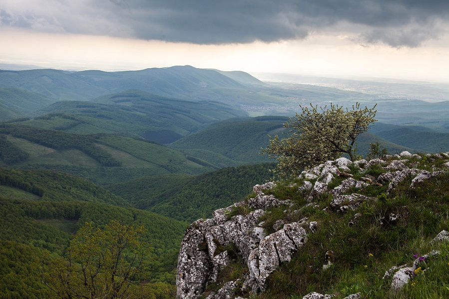 Bukk-hegyseg