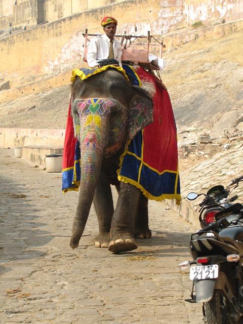 India2_Jaipur_17