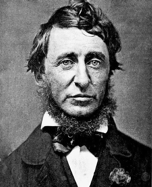 486px-Henry_David_Thoreau