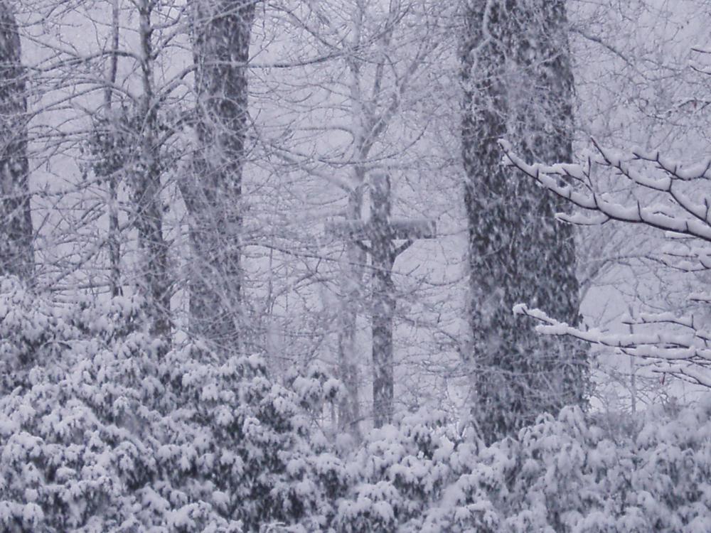 Schneechaos-Schneefall
