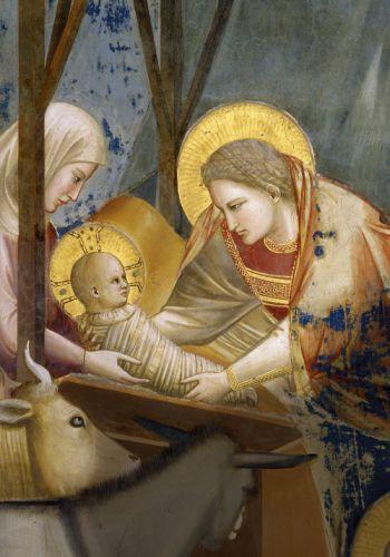 Giotto jezus szuletese