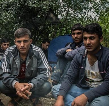 afgan menekultek