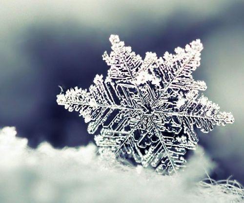 hópehely 2015