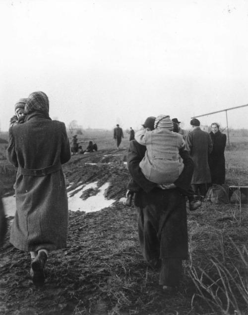 menekülők 1956